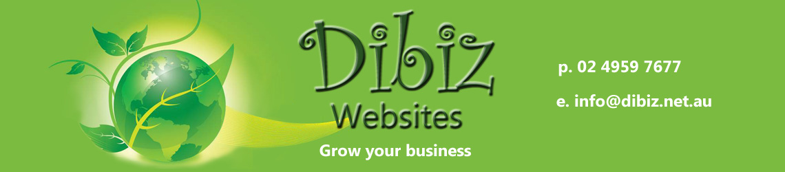 Dibiz Websites